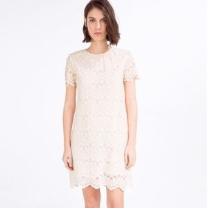 Zara | Crochet Tunic Dress
